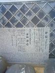 NEC_1678.JPG