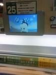 NEC_2033.JPG